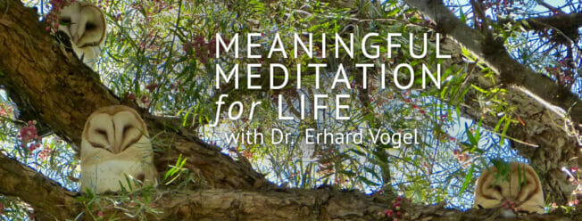 Meaningful Mediation for Life with Dr. Erhard Vogel   Web Talk Radio