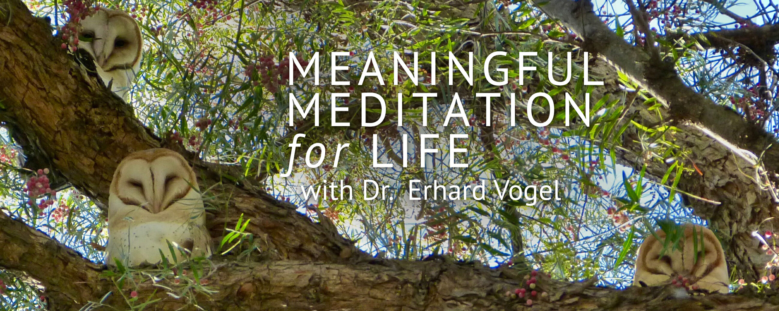 Meaningful Mediation for Life with Dr. Erhard Vogel | Web Talk Radio
